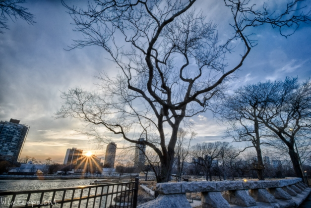 Lincoln Park Sunset